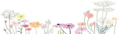 bloemen2020 07 03