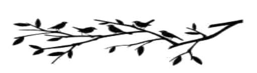 vogels2020 07 03
